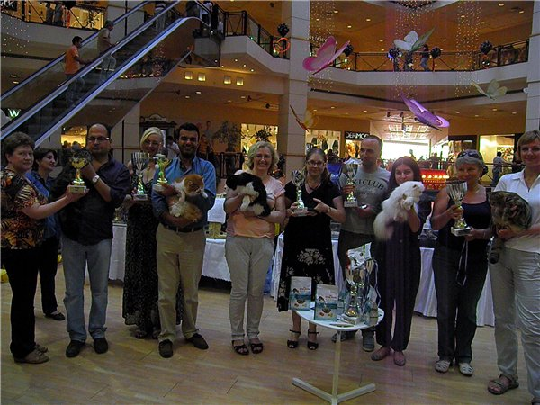ASC Cat Show in Turkey. Results